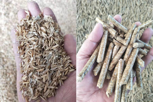 Biomass Fuel Pellet Production with Rice Husk